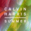 Calvin Harris - Summer (Afterfab Tropical Remix) FREE DOWNLOAD