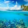 Ozeanische Lieder
