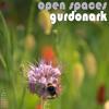 Gurdonark - Open Spaces (waag Rel009) - 05 Cricket