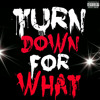 Ryu Daze - Turn Down For What ( Breaks Bootleg )