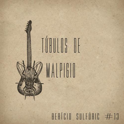 13 - Túbulos de Malpigio