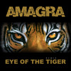 Eye Of The Tiger - FREE DOWNLOAD