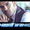 Hariye Fela Bhalobasha || Habib Wahid