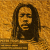 Peter Tosh Live @ Kingston Jamaica 12.31.1983 [The Final Show]