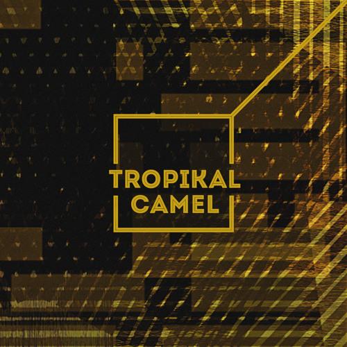 Tropikal Camel - Black Panther