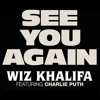 Wiz Khalifa Ft. Charli Puth - See You Again (DJ EMIL & DJ ROLAND REMIX)