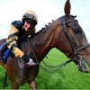 Punchestown - Danny Mullins