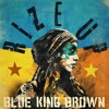 Mo' Truth_Blue King Brown Feat Sly And Robbie