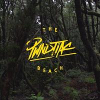 PWNDTIAC The Beach Ft. Krue (Les Loups Remix) Artwork