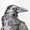CrowKing