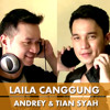 LAILA CANGGUNG (IYETH BUSTAMI) -  COVER BY ANDREY AND TIAN SYAH