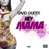 Hey Mama- David Guetta Ft Nicki Minaj And Afrojack (Club remix)