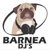 Download Summer  2015 Part 1  Mix by Dj Eran Barnea Mp3