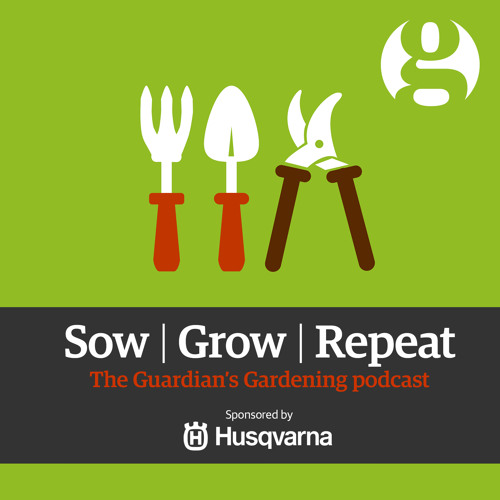 Sow, Grow, Repeat: Gardening without a garden
