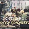 Vocea Romaniei (The Voice of Romania)
