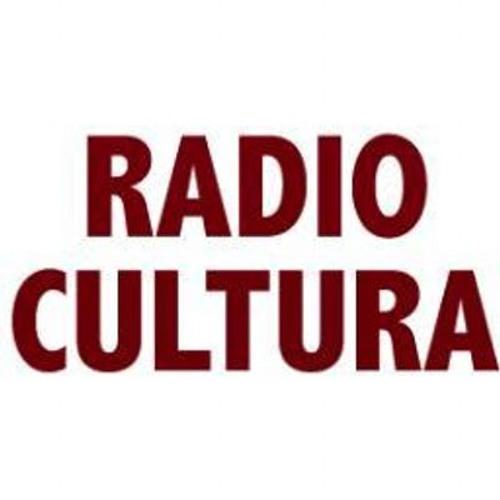 -26/04-15- Entrevista a Catalina Hornos en Radio Cultura - Tiempos Liquidos