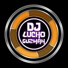 DJ LUCHO GUZMAN MIX ELECTRO DE LO MEJOR 2015 , AVICII, MARTIN GARRIX, DAVID GUETTA...