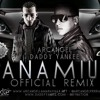 Arcangel Ft Daddy Yankee - Panamiur (Offical Remix)