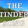 THE TINDER SONG (Video @ youtube.com/lkmalley)