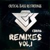 Indian Junglist  - Enter The Vortex (Indian Junglist & Maria Terror Remix)