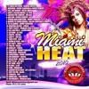 Miami Heat 2010