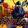 Ninja Gaiden 外伝 [Intro-Act.I] [1988] [Nes] [Tecmo]