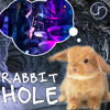 Rabbit Hole: The Rockstar's Journey
