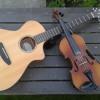 bluegrass fiddle tune- Salt Creek