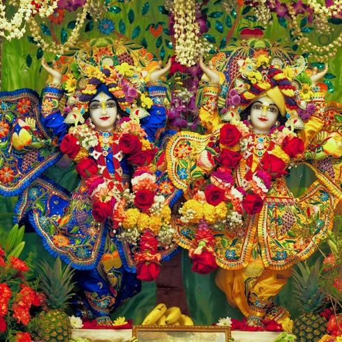 8 HG Radha Caran Dasa – The Ecstatic Dancing Of Lord Caitanya At Ratha Yatra 24.12.2014