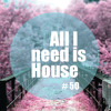 All I Need Is House # 50