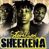 Stonebwoy - Sheekena ft R2Bees