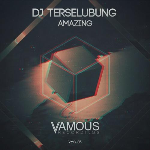 Dj Terselubung - Amazing (Original Mix)