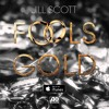 Jill Scott - Fool's Gold (produced by D.K. the Punisher, written by SiR)