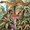 Peter Power - Jungle Voodoo