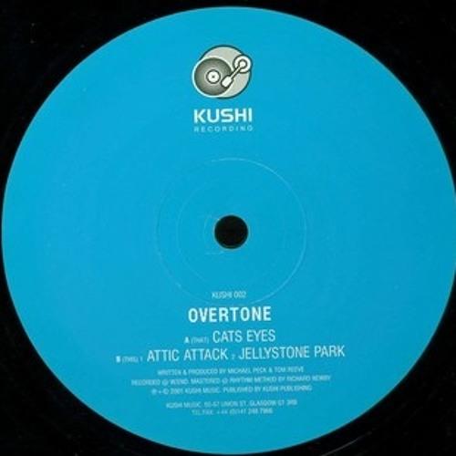 Overtone - Jellystone Park (Paddy's re-edit)