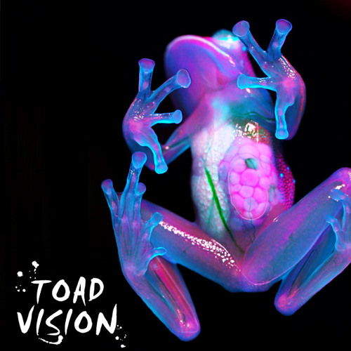 TOAD VISION (featuring Saba)