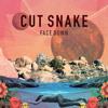 Cut Snake - Face Down (Jad & The Ladyboy Remix) FREE DOWNLOAD