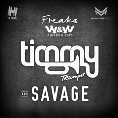 Timmy Trumpet & Savage - Freaks (W&W Bigroom Edit)