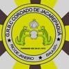 G.R.B.C. Coroado de Jacarepaguá 2010 Enredo: A praça é nossa !