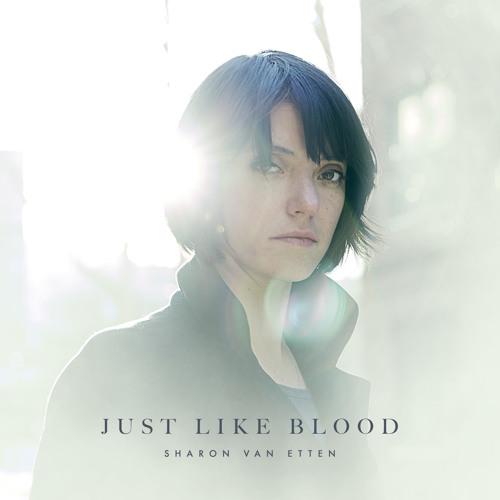 """Sharon Van Etten - """"Just Like Blood"""""""