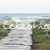 Celestia #005