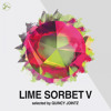 VA - Lime Sorbet Vol. 5 (Selected & Mixed By Quincy Jointz)