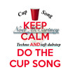 Pitch Perfect- The Cup Song (soft dubstep)