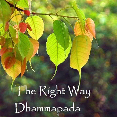 The Right Way: Dhammapada 1 - 5