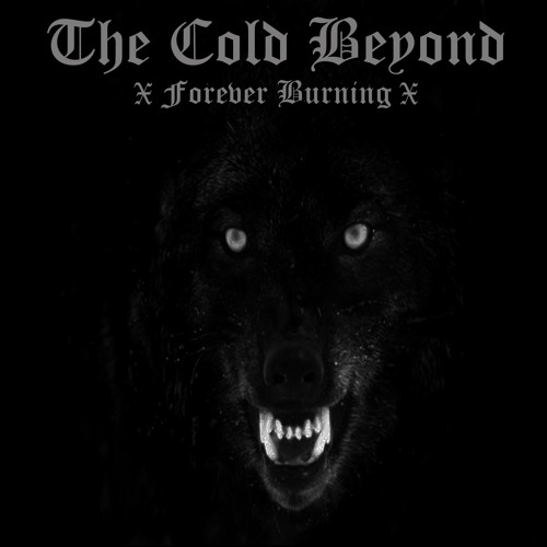 The Cold Beyond - 04 - A Grim Silence