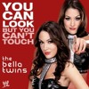 WWE: You Can Look (But You Can't Touch) [Bella Twins]