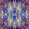 A Journey Into Hyperspace   #014
