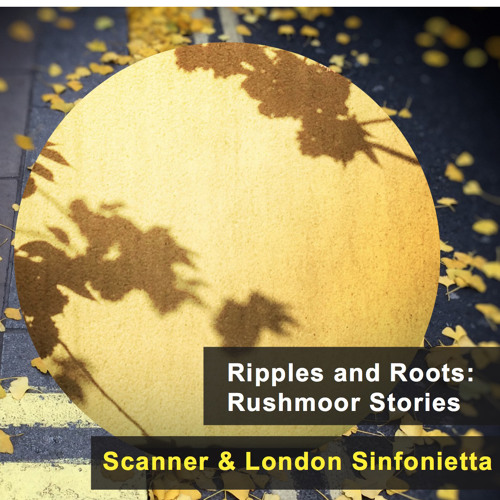 Ripples and Roots: Rushmoor Stories