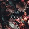 Download Ta - Ku - Love Again Feat. JMSN & Sango (Paladion Remix) Mp3
