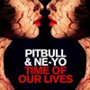 Pitbull ft. Ne-Yo - Time Of Our Lives (Official Instrumental) + DOWNLOAD